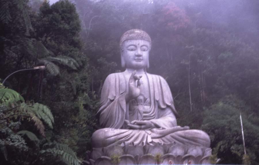 buddha and his dhamma book in marathi pdf